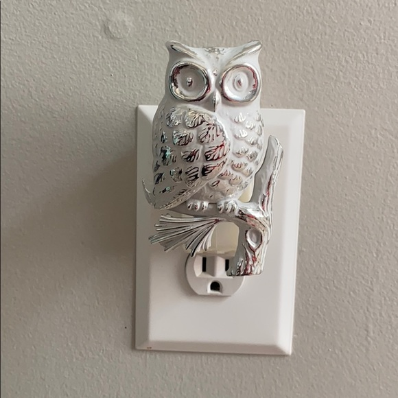 White and Silver Owl Wallflower